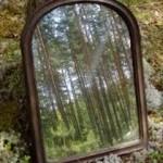 El bosque del espejo mágico